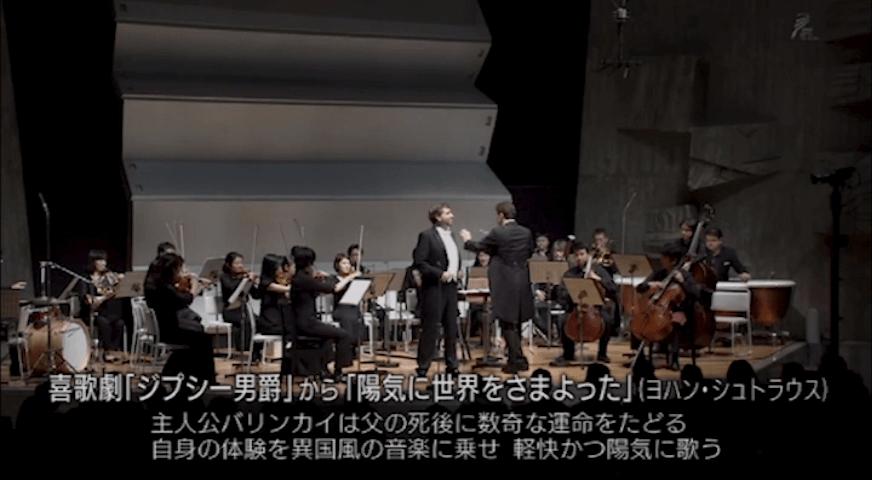"Strauss: ""Als flotter Geist"" (Zigeunerbaron)"